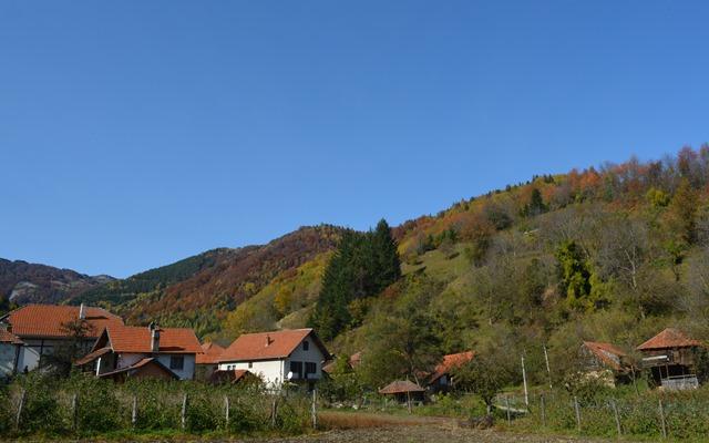 selo Brzece
