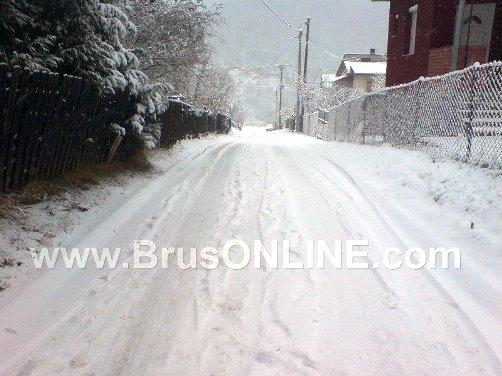 Brus sneg060117