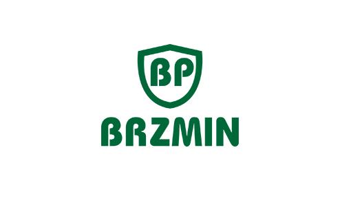 Brzmin logo