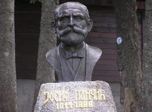 Josif Pancic 3