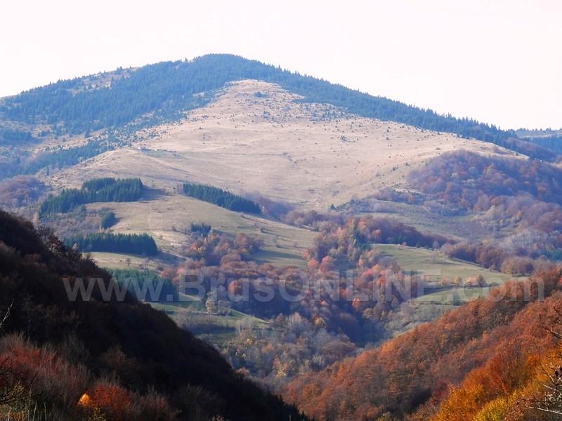 Djerekare panorama
