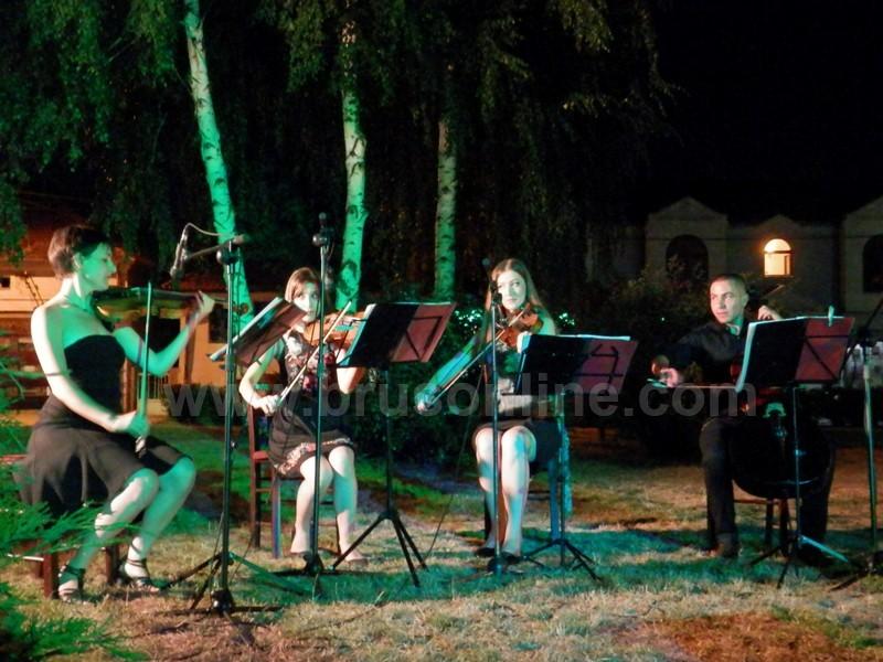 koncert korona